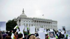 Anistia Daca: o que é a lei Dream?