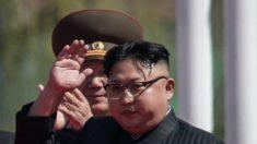 Líderes do regime da Coreia do Norte usaram passaportes brasileiros com nomes falsos