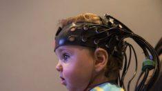 Bebês e adultos sincronizam ondas cerebrais através do contato visual