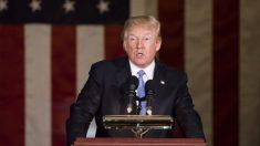 Proposta de orçamento de Trump troca parte do Programa de Cupom de Alimentos por cesta básica '100% americana'