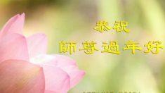 Praticantes de Falun Dafa do mundo todo enviam saudações ao seu fundador
