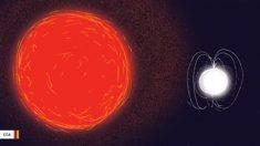 Cientistas observam gigante vermelha ressuscitar estrela zumbi
