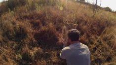 Homem demonstra sua admirável amizade com leões selvagens