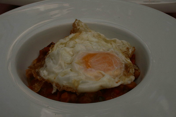 EUA recolhem mais de 200 milhões de ovos por suspeita de contaminação por salmonela