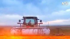 Este é provavelmente melhor método para eliminar ervas daninhas e controle de peste na agricultura