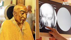 Mil anos depois de mumificado, você não acreditará nas condições do cérebro deste monge