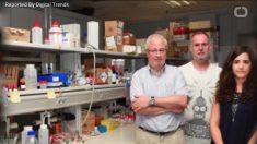 Cientistas criam bafômetro para identificar cocaína e outras drogas
