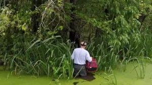 Gato fica preso em pântano após furacão, mas socorrista profissional está a caminho. Confira!