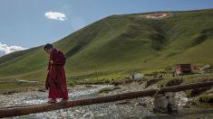Mais abusos de direitos humanos em Xinjiang e Tibete: medicação forçada em campos de detenção e vigilância generalizada