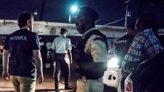 Grande operação internacional resgata centenas do tráfico humano na América Latina e Caribe