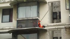 Gato fica preso no lugar mais estranho e bombeiro tem de escalar exterior de edifício para salvá-lo