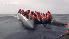 Número de solicitações de asilo cai 44% na União Europeia