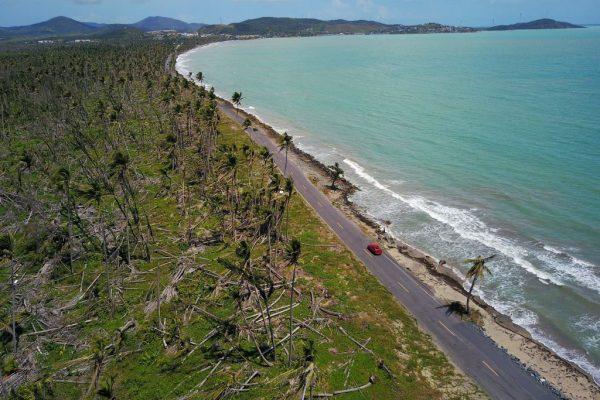 Uma estrada na ilha principal. (RICARDO ARDUENGO / AFP / Getty Images)