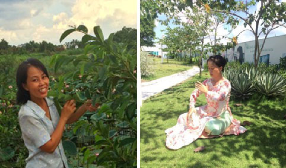 Do Nguyen Hoang Uyen left law school and her family to become a nun (NTD.TV)