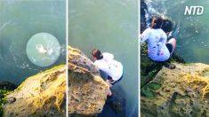 Mulher vê algo se movendo na água – de repente ela percebe que tem que agir rápido