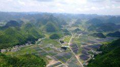 Indústria solar da China prevê bilhões em prejuízos após tarifas dos EUA