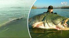 """Pescador espera pegar o maior peixe de sua vida – mas observe quando esse """"monstro"""" surge"""