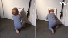 Criança parece procurar o gato pelo buraco da porta – mas quando mamãe pergunta o que ela está fazendo, opa!