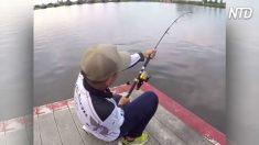 Homem puxa vara de pescar e captura o maior peixe de água doce do mundo