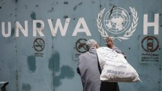 Jornal diz que EUA planejam cortar fundos de programa da ONU para Palestina