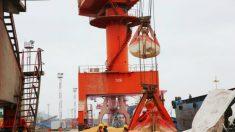 Colheita de soja na China cai em 300 mil toneladas devido a geadas antecipadas