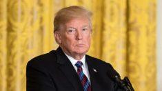 Trump pede que New York Times identifique autor de artigo anônimo por questões de segurança nacional