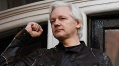 Julian Assange deixa comando do WikiLeaks, mas continua na equipe editorial