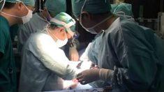 """Relato de uma testemunha ocular rara sobre a extração de órgãos vivos: """"nenhum anestésico foi usado"""""""