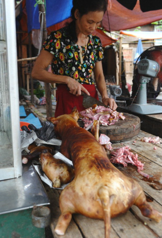 Venda de carne de cachorro em Hanói (Hoang Dinh Nam/AFP/GettyImages)