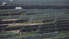 China aplaude fim de restrições da UE a paineis solares