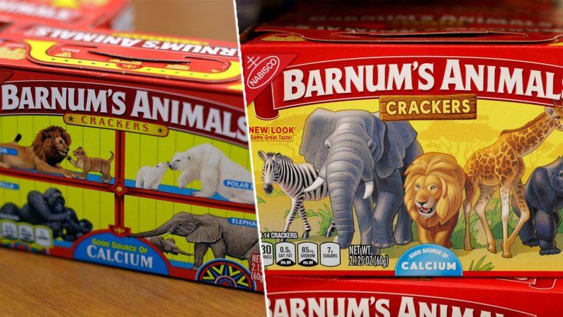 Caixa de biscoitos liberta animais de suas gaiolas