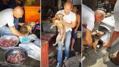 Cachorro é resgatado do corredor da morte no Camboja