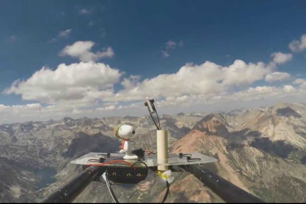 Balão aerostático que mede radiação, com a imagem de um animal de estimação (Earth to Sky Calculus)