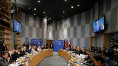 UE e Vietnã assinam acordo para deter exploração ilegal de madeira