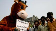 Por religião ou necessidade, indianos abraçam cada vez mais o vegetarianismo