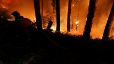 Autoridades portuguesas dão por controlado incêndio em Sintra