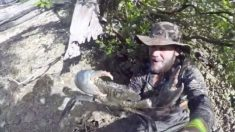 Australiano ousado mergulha de cabeça em mangue para capturar caranguejo gigante