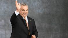 Após conversa com Bolsonaro, Orbán exalta vitória de