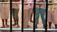 Câmara aprova projeto que prevê prisão domiciliar para gestantes e mães