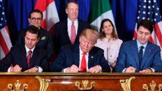 EUA, Canadá, México assinam novo acordo comercial no G20 em Buenos Aires (vídeo)