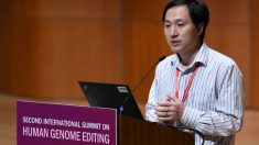 Cientista chinês que anunciou bebês geneticamente modificados suspende testes