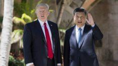 Resultados das eleições nos EUA frustram expectativas de Pequim, mas Trump e Xi ainda podem chegar a um acordo