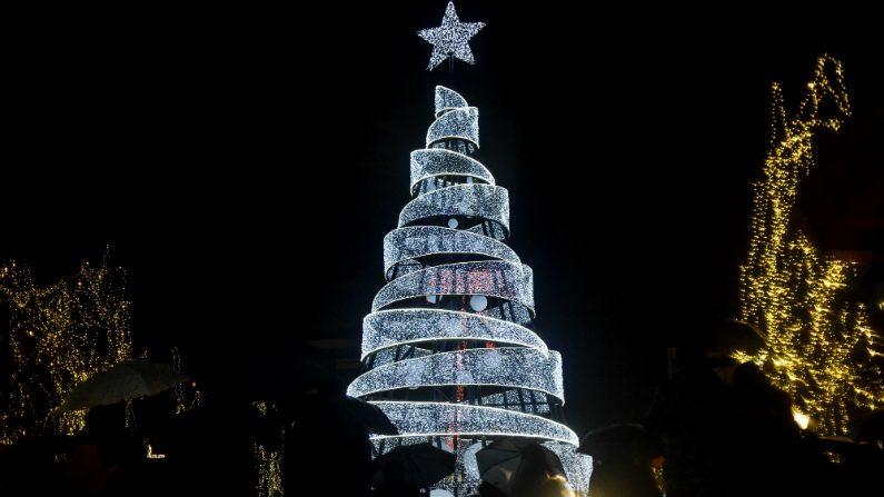 """Histórias que se escondem por trás das """"árvores de Natal"""""""