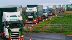 Ensaios para o Brexit: britânicos testam capacidade rodoviária simulando Brexit sem acordos