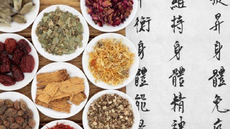 Registros históricos da medicina tradicional chinesa (Parte 2)