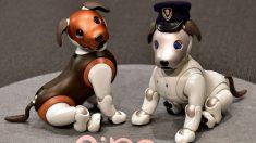 """Sony apresenta uma versão """"policial"""" de seu cão-robô Aibo (Vídeo)"""