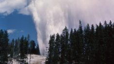 Cientista do Parque Yellowstone explica porque gêiseres estão ficando mais ativos