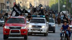 Trump pede aos aliados europeus que repatriem terroristas do ISIS capturados para julgamentos