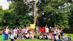 Sínodo Pan-Amazônico: a quem interessa um confronto Brasil-Vaticano?