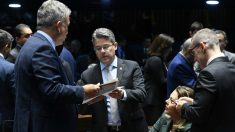 Senador líder do RenovaBR pede abertura de CPI das Cortes Superiores
